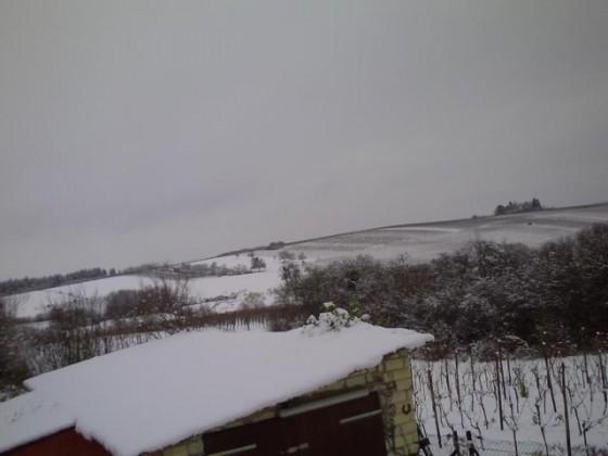 01.02.2015-1 Remich im Schnee