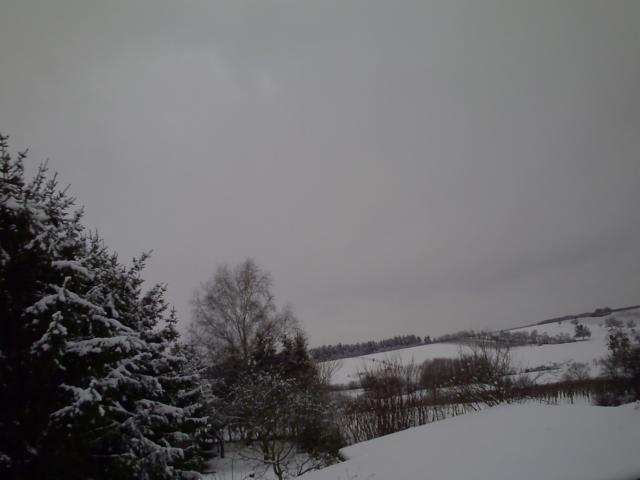 01.02.2015-3 Remich im Schnee