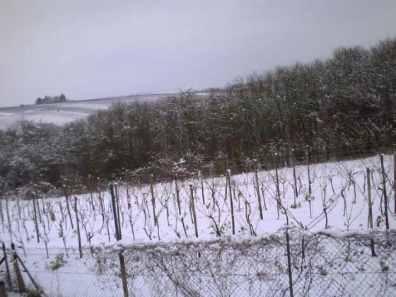 01.02.2015-2 Remich im Schnee